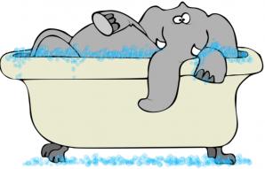 Elephant dans baignoire leger copie